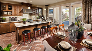 Toll Brothers - San Joaquin Hills Photo