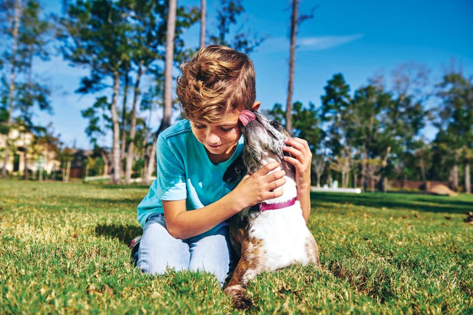 One acre dog park for residents