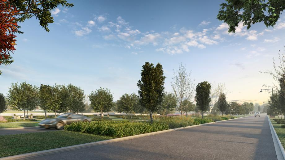 A park-like setting with community gardens and groves