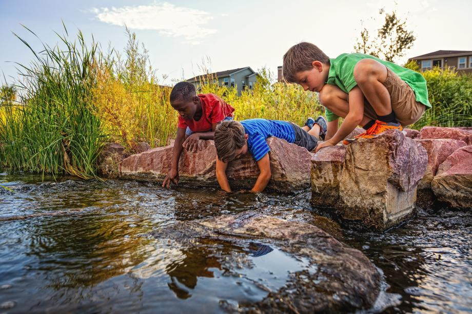 Learn about nature at Senac Pond