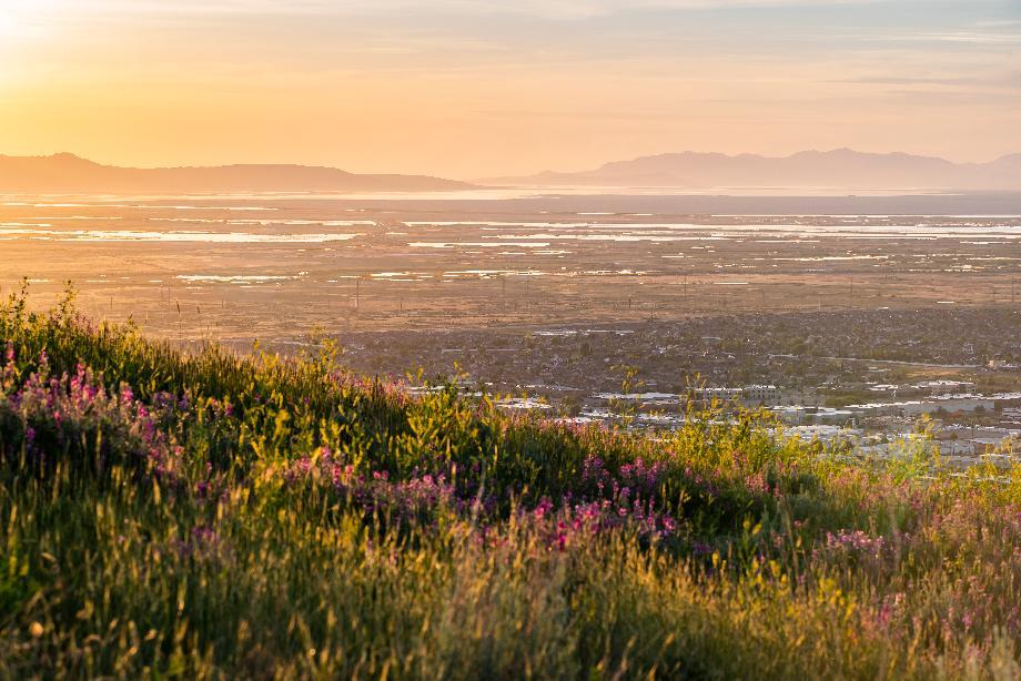 Community views of the Salt Lakes