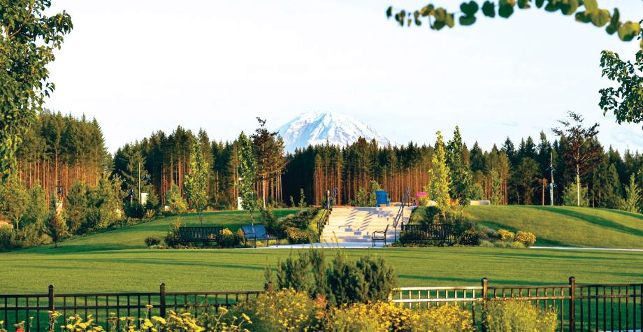Stunning Mount Rainer view over the Village Green park