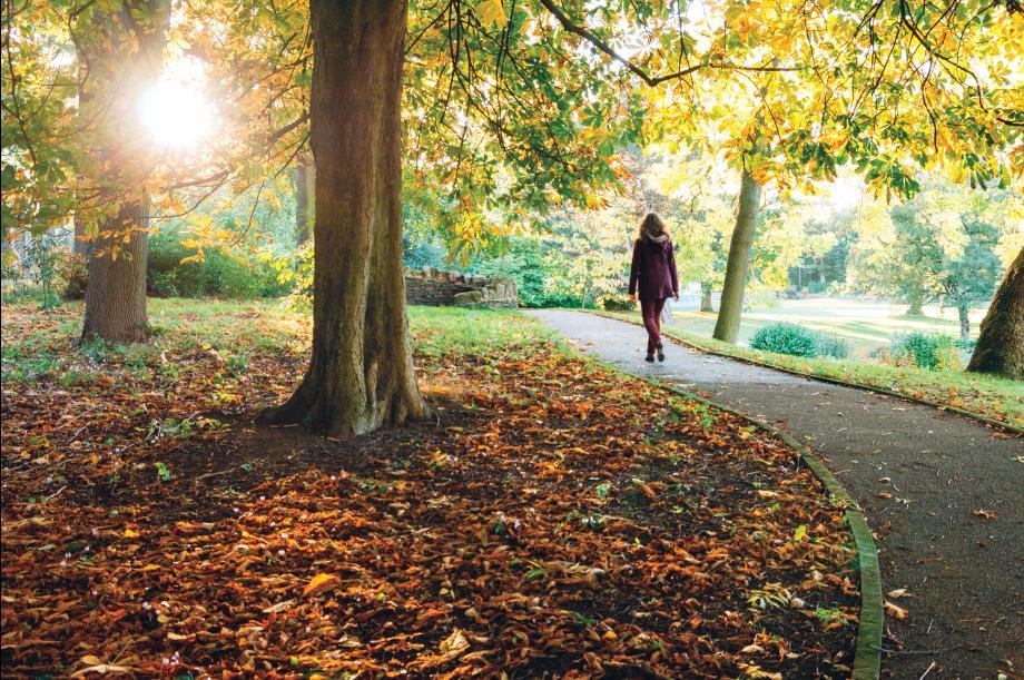 Enjoy peaceful walking trails