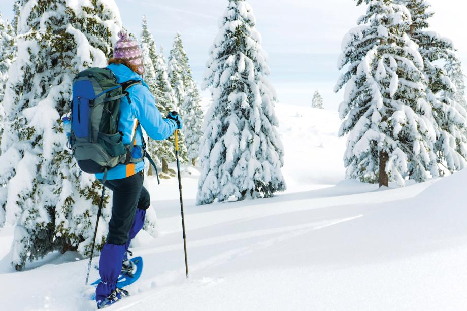 Winter sports at Crystal Mountain or The Summit at Snoqualmie Ridge are only an hour away