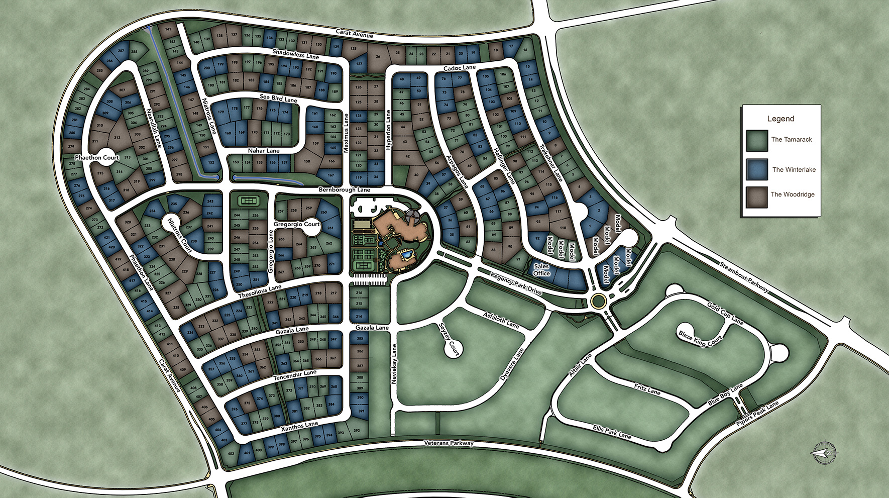 Regency at Damonte Ranch - Winterlake Collection Site Plan