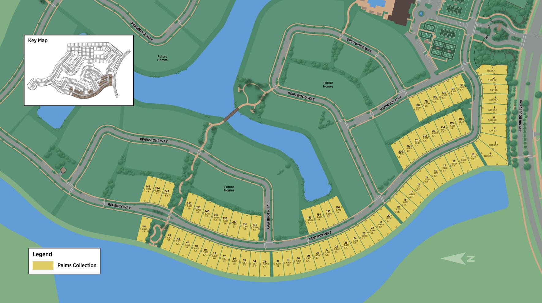 Regency at Avenir - Palms Collection Site Plan
