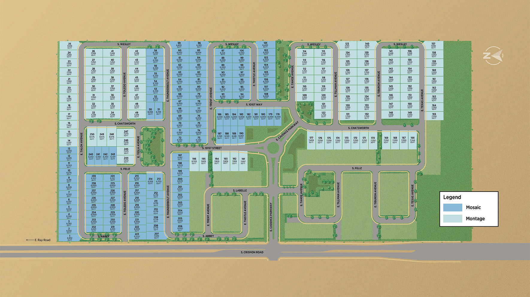 Toll Brothers at Cadence - Mosaic Collection Site Plan