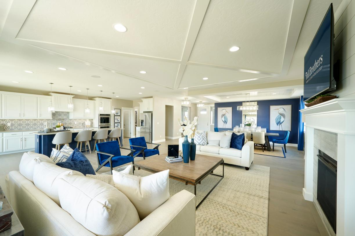 Large open concept living