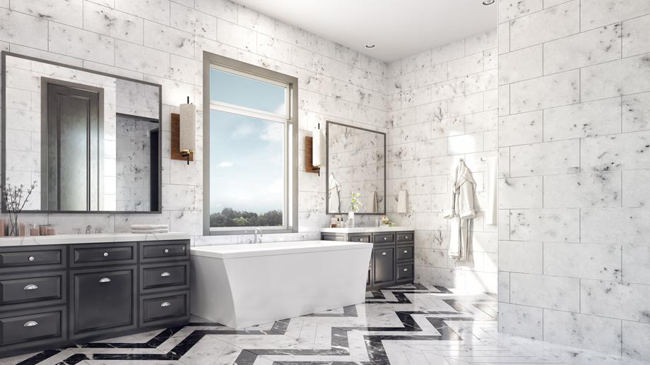 Master Bath – Conceptual