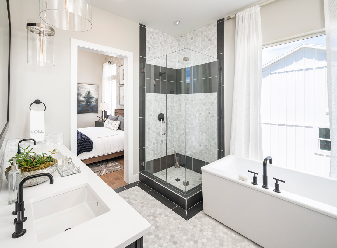 Primary bathroom suite with large walk-in shower