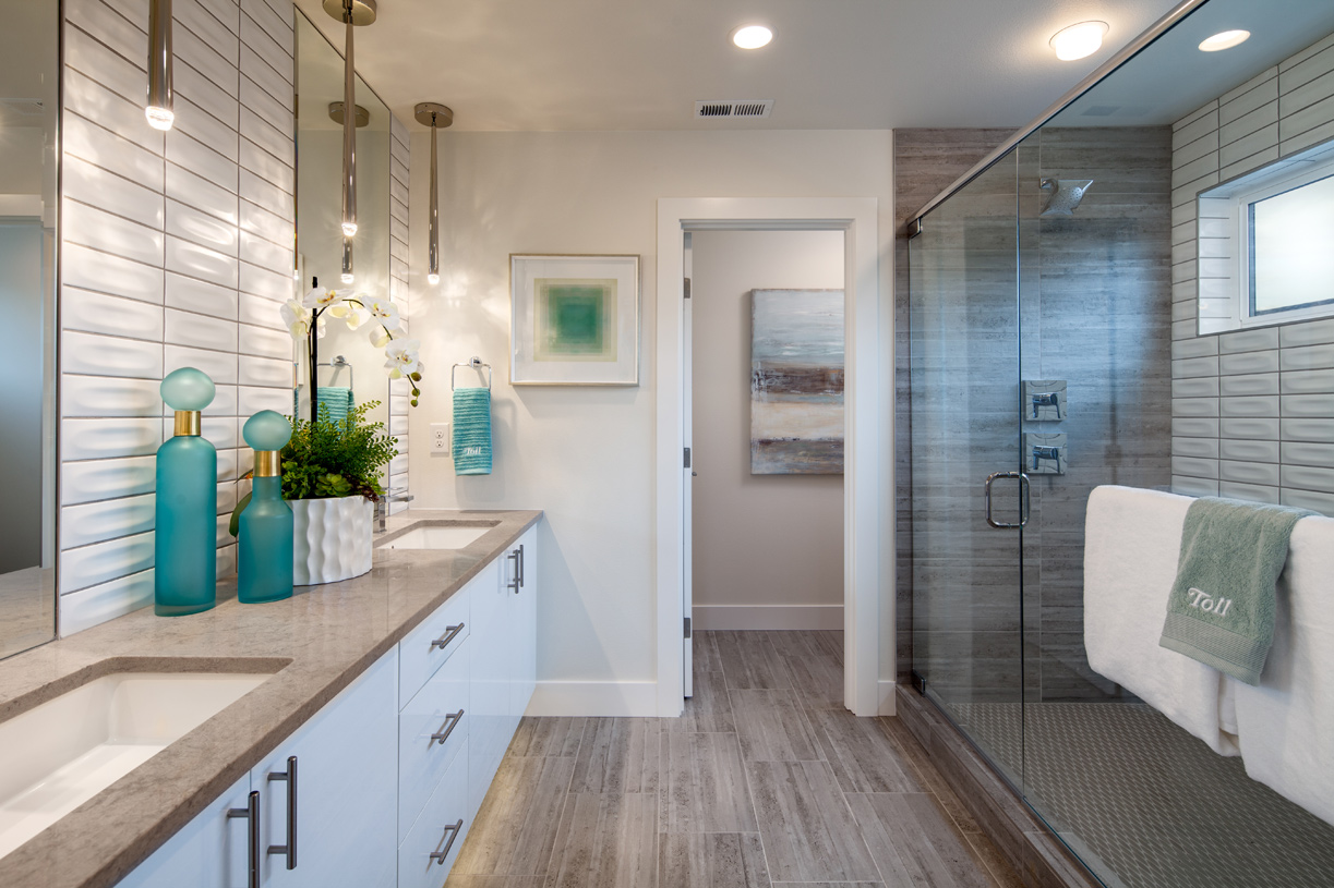 Stylish primary bath with walk-in shower and separate water closet