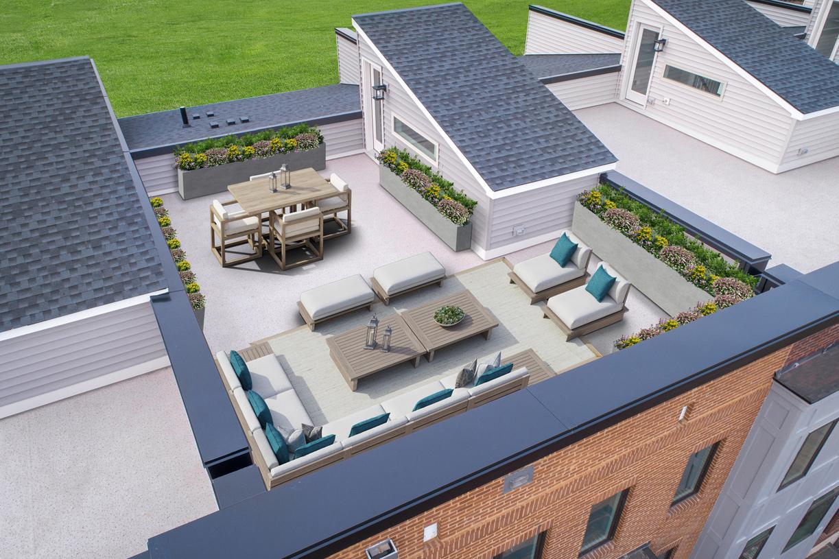 Delanie rooftop terrace
