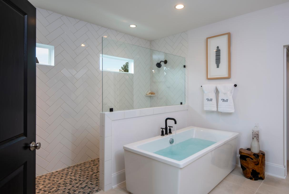 Luxe Primary Bath with Walk-in Shower
