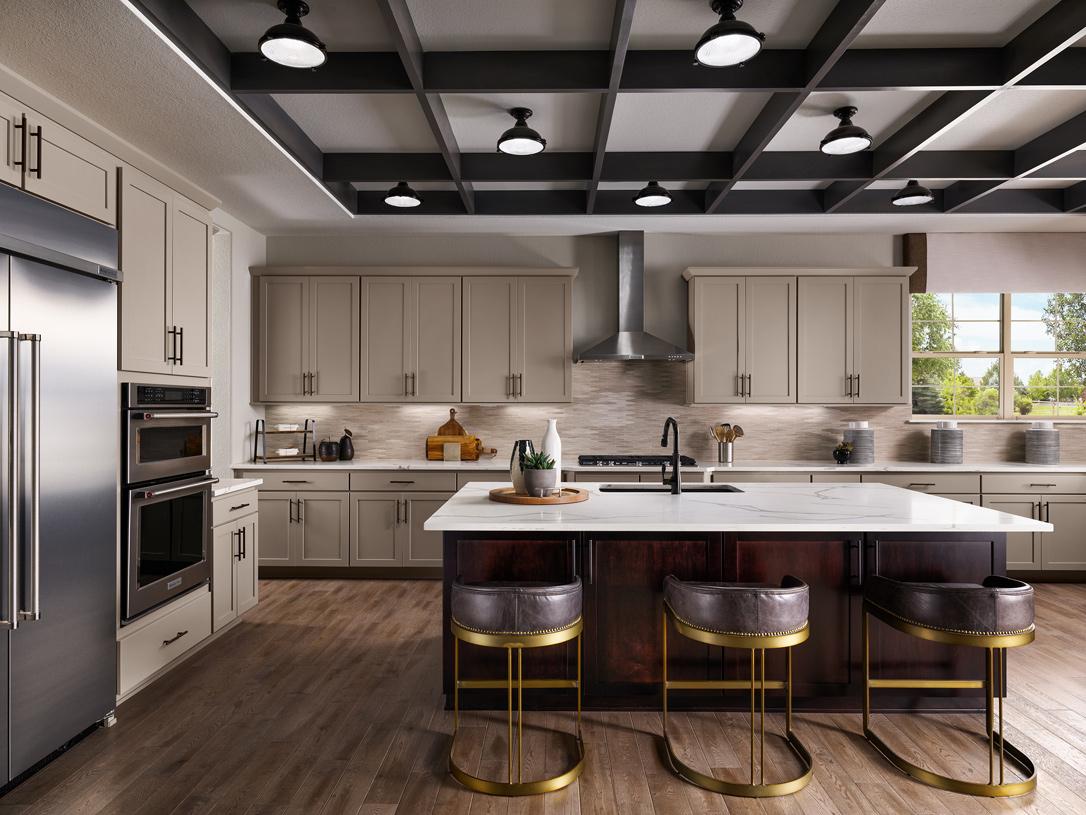 Dillon kitchen