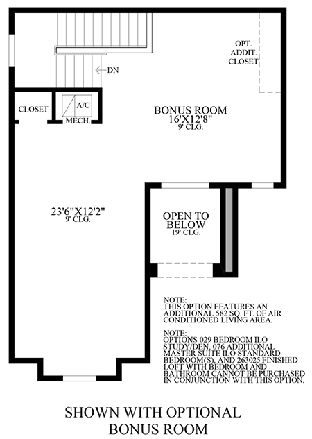 Optional Bonus Room
