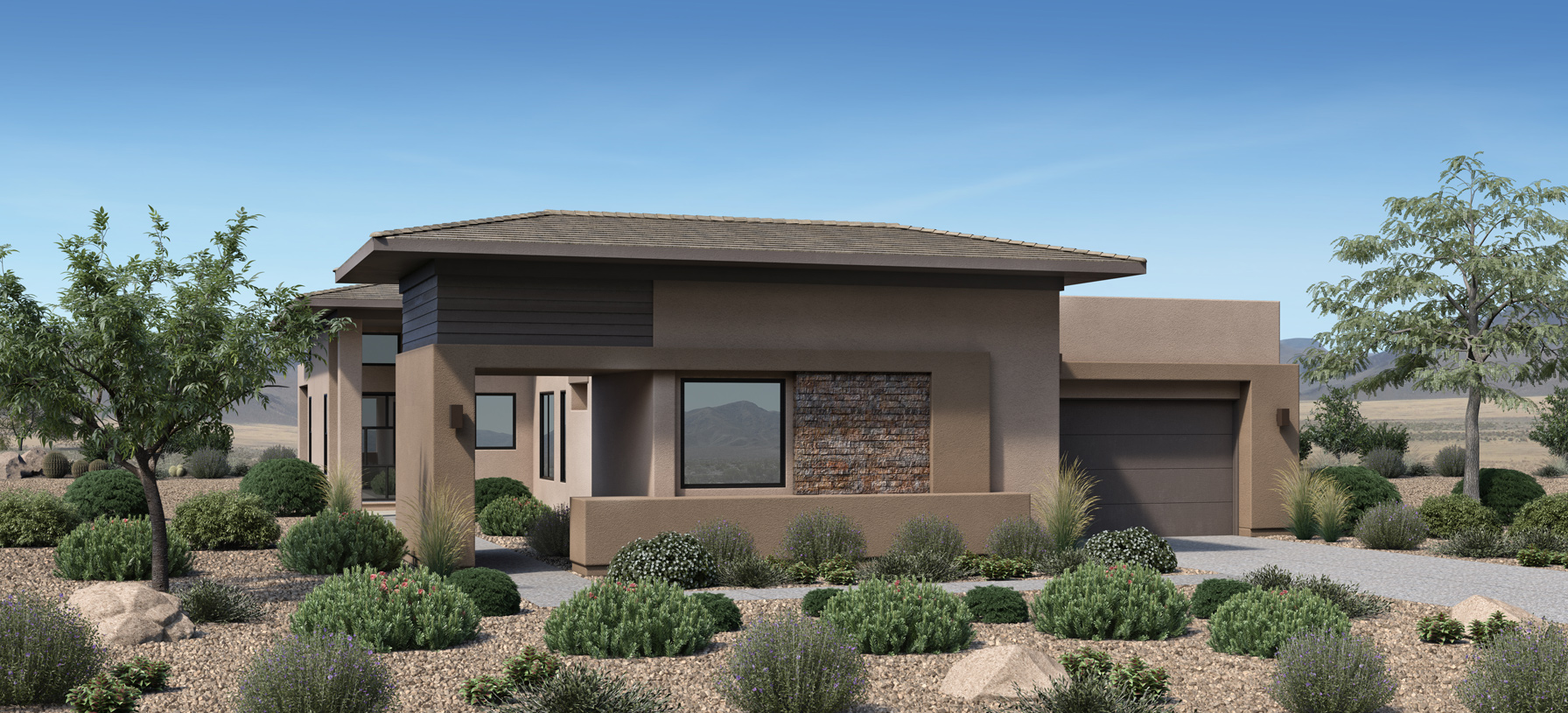 Pacifica -  Desert Contemporary