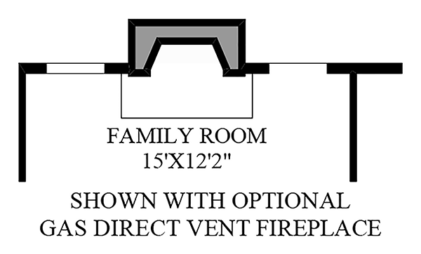 Optional Gas Direct Vent Fireplace