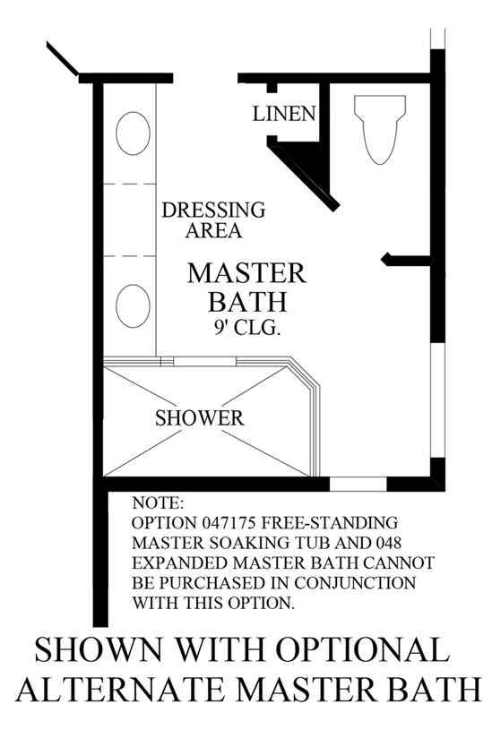 Julington Lakes - Optional Alternate Master Bath