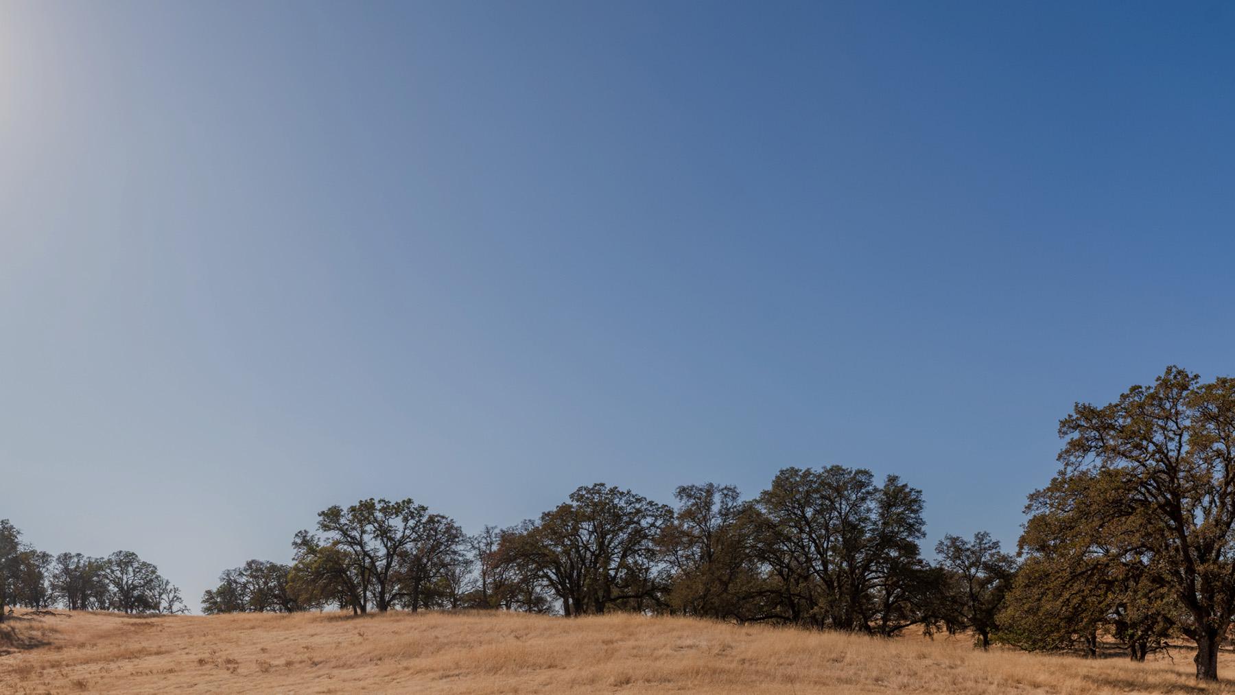 Spotlight - Toll Brothers at Folsom Ranch
